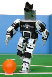 This robot is based on the Bioloid construction kit of Robotis. It has 19DOF